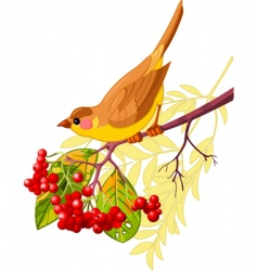 autumn bird vector image vector image