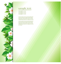 background with green leaves and flowers vector image