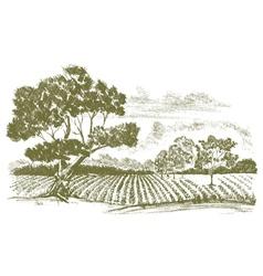 Farmfielddrawing vector