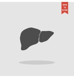 flat liver icon vector image
