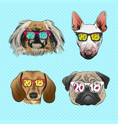 Dog wearing sunglasses year of the dog vector