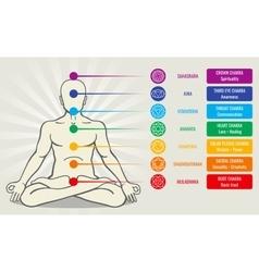Human energy chakra system ayurveda love asana vector