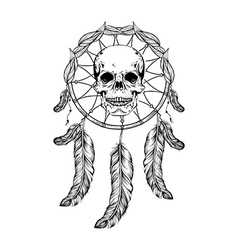 Dream catcher with feathers and leafs skull in vector