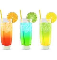 highball cocktail set vector image