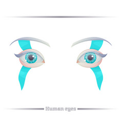Human eyes on a white background vector