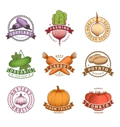 Vegetables colorful labels set vector