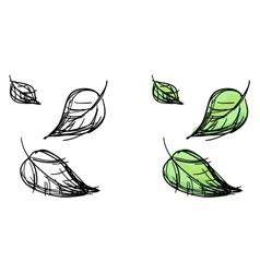 Sketch of falling leaves vector