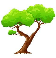 Cartoon heart shaped tree vector image