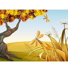 Dragon flies in the autumn hill vector