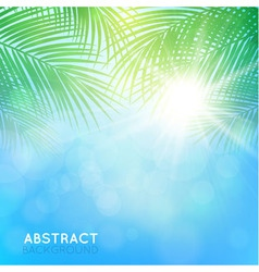 abstract background with palm branches vector image