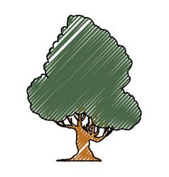 Beautiful tree isolated vector
