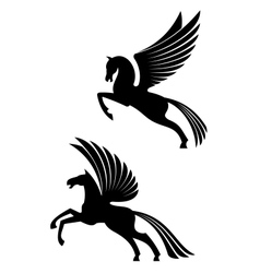 Pegasus winged horses vector image