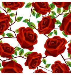 Roses pattern vector