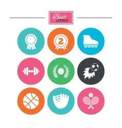 Sport games fitness icon Football volleyball vector image