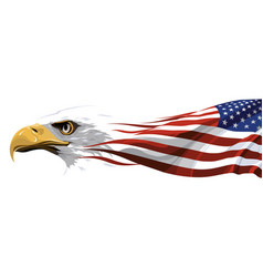 The national symbol of the usa vector