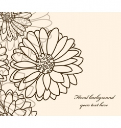 Floral background chamomile vector