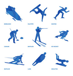winter sports icon set 1 vector image