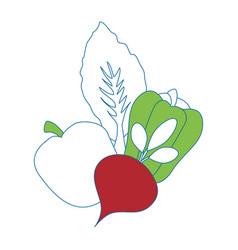 Healthy vegetables symbol vector