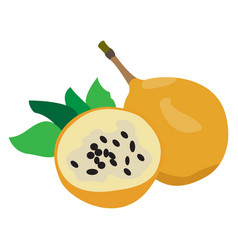 pair of passion fruits vector image