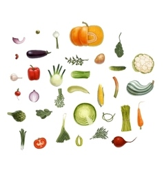 Vegetables sesign set vector image