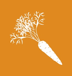 Carrot Vegetable Icon vector image vector image
