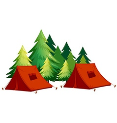 tents vector image vector image
