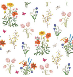 wildflowers vector image vector image