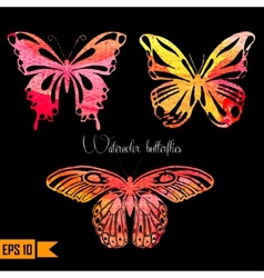 Amazing colorful set with butterflies painted vector