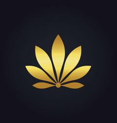 Beauty gold flower eco botany logo vector