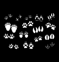 Imprint icons of animal or birds foot paws vector