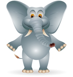 Funny fat elephant cartoon vector
