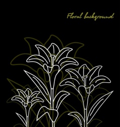 Floral background lily black vector