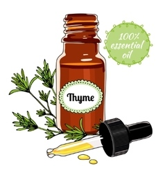 Bottle of thyme essential oil with dropper vector