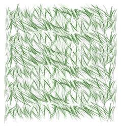 grassland vector image vector image