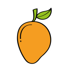 Mango fresh fruit drawing icon vector