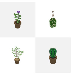 Isometric plant set of peyote blossom fern and vector