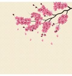 Japanese Sakura Lush branch dark pink cherry vector image vector image