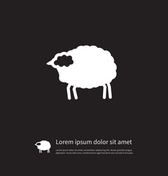 isolated livestock icon lamb element can vector image vector image