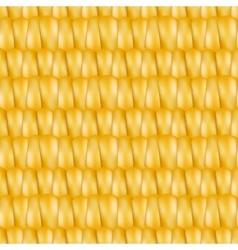 Realistic texture corn vector