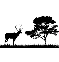Silhouette of deer and tree vector