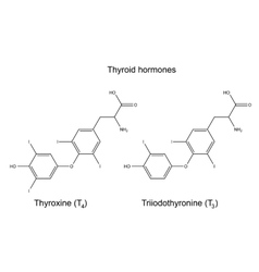 Chemical formulas of thyroid hormones vector image vector image
