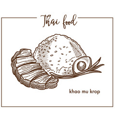 khao mu krop with egg from thai food vector image