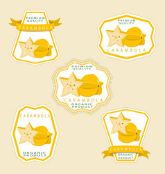 the theme carambola vector image vector image
