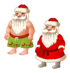 Two figures santa claus dressed and underpants vector