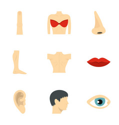 Human anatomy icons set flat style vector
