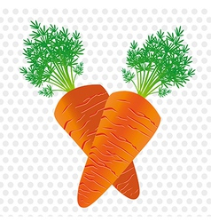 Two carrots isolated on background of gray dots vector