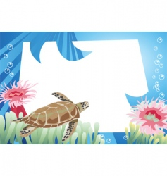 Turtle background vector