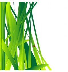 Fresh grass vector