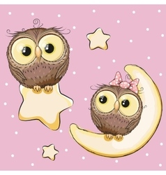 Lovers owls vector