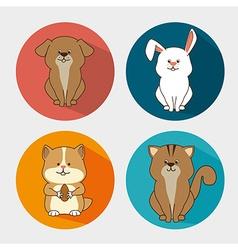 Pet design vector image
